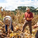International Agricultural Development Graduate Program